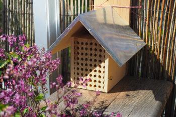 Un nichoir à abeilles maçonnes sur mon balcon